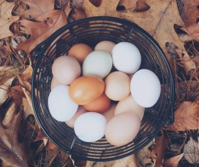 How to Tell if Your Eggs Are Edible