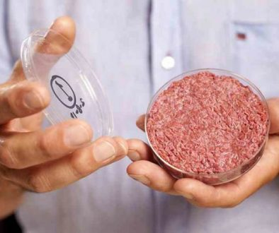 Meat Grown in the Lab